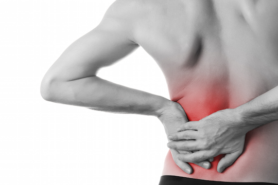 Prevention and Treatment Options for Low Back Pain Provided by Vancouver Chiropractor